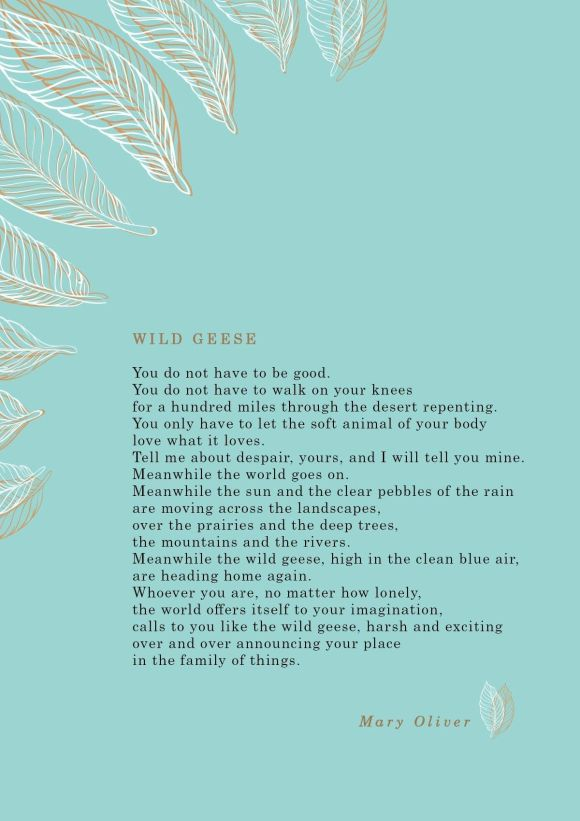 Mary Oliver 'Wild Geese'